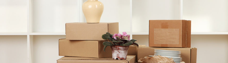 Removals Brighton and Hove